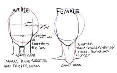 Drawing Tips -