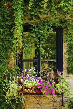 Vines & Flowers...should this be a kitchen or bathroom window? ^_^