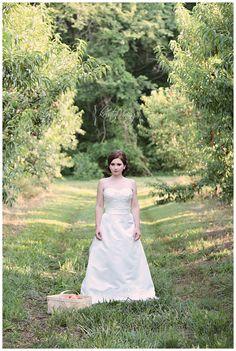 peach orchard, bridal portrait, copyright @Kristin Vining Photography Charlotte, NC Wedding Photographer