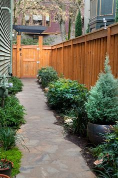 looking for inspiration for a path along the side yard to the back -my path must be narrower, though.