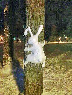 Sculptured bunny snow creation -- playtime!