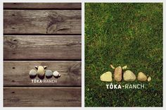 Tóka Ranch   identity by Barbara Bernat, via Behance