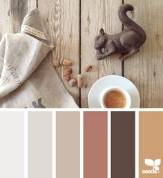 Color Nut - http://design-seeds.com/home/entry/color-nut1