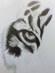 Tiger Eye by Keren Chinaka