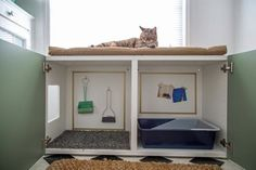9 Purr-fect DIY Ways to Hide the Litter Box