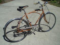 Malvern Star Skidstar Bike