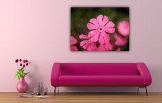 """Farbe - Leinwand """" Lilly Pink   """" 80 x 60 cm - ein Designerstück von Heavensblue-Fotografie bei DaWanda"""