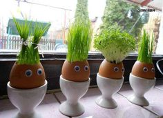 "If you love juicing wheat grass, why not try growing it in these creative ""planters"" made from egg shells. Kids Crafts, Easter Crafts, Thanksgiving Crafts, Easter Gift, Easter Decor, Egg Shell Planters, Diy Planters, Diy Niños Manualidades, Diy Ostern"