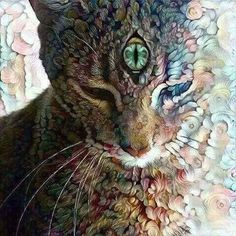Psychadelic cat with third eye