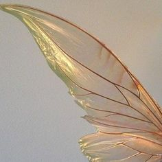 genterie:Fairy Wings (detail) by TheFancyFairy on Etsy February 25 2020 at Angel Aesthetic, Gold Aesthetic, Aesthetic Photo, Aesthetic Pictures, Aesthetic Light, Aesthetic Coffee, Aesthetic Vintage, Aesthetic Fashion, Fairy Wings