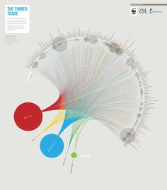 The Global Timber Trade inforgraphic | MyDesy 淘靈感
