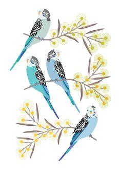 Botanical Wallpaper, Bird Wallpaper, Budgies, Parrots, Australian Birds, Pole Art, Bird Prints, Bird Pictures, Bird Art