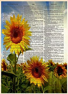 Sun flower botanical dictionary page art. A field of beautiful sunflowers basking in the sun, printed on a vintage dictionary page. These unique and original artwork are printed on authentic vintage early 1900's dictionary paper from books i have rescued from booksellers who decided they were in unworthy condition and destined for destruction. Note: Items do NOT come in a frame. This is just the print. You will not be getting this exact dictionary page. The page will be a random vintage...