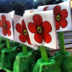 109 Best Memorial Anzac Remembrance Day Art Ideas For Kids Images