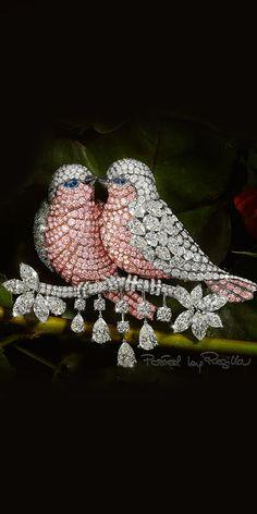 Regilla ⚜ Graff Bird brooch