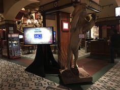 Buckhorn Saloon - Single Display for Sponsor Signage Video Wall, Display Screen, Photomontage, Screens, Quad, Signage, Window Screens, Quad Bike