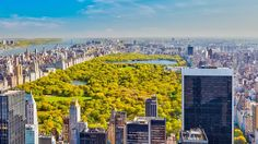 5 Tage New York: DAS solltet ihr ansehen inkl. We have for you a travel plan for 5 days Central Park, Places To Travel, Places To See, Travel Around The World, Around The Worlds, Disneyland, York Hotels, Usa Holidays, Yorky