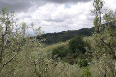 Super camping in Toscane. Heerlijk eten, mooie wandelingen (dat uitzicht!) en fijne plek voor kinderen met zwembad en speelveld. http://www.campingsangiusto.it/