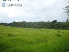 Sítio / Chácara para Venda - Brasília / DF no bairro DF 135 (PROXIMO DO LAGO SUL), 3 dormitórios, 2 banheiros, 2 garagens