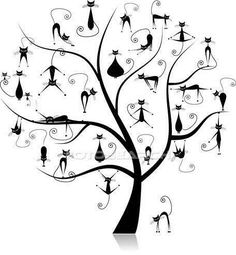 black cat tree..