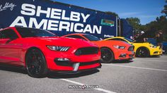 Shelby American  Mustang Week 2017 Event Coverage | Mustang Fan Club
