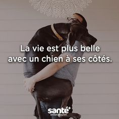 Love Quote & Saying Image Description c'est certain Cute Puppies, Cute Dogs, Dogs And Puppies, Animals And Pets, Baby Animals, Cute Animals, Knowledge Quotes, French Quotes, Dog Quotes