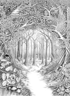 Enchanted forest by ellfi.deviantart.com on @deviantART - Stunning artwork!