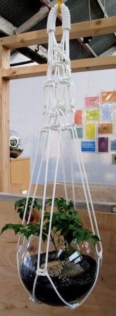 Assorted macrame pot hangings
