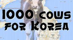 Nord + Süd Korea