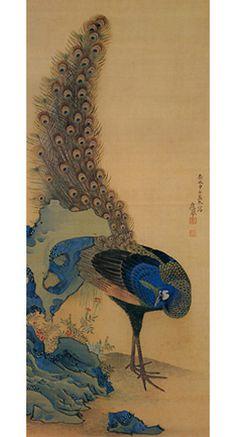 円山応挙(Maruyama Okyo) photo Japanese Painting, Chinese Painting, Chinese Art, Peacock Painting, Ink Painting, Japan Illustration, Art Japonais, Japanese Artists, Bird Art