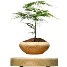 Magnetic Suspended Plant Pot