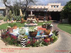 Hacienda del Sol Guest Ranch is on the historic list of hotels. The gardens are amazing, the staff is wonderful.