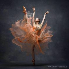 The Art of Dance.......by NYC Dance Project