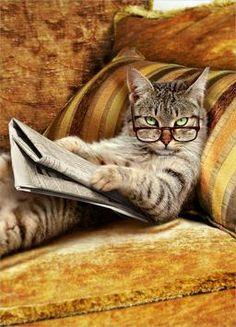 Читать журналы  Открыть и читать журнал, хотя бы и развлекательный – это вроде как открыть бутылку шампанского. Те же бурлящие эндорфины, пенящиеся, соблазнительные, ритуальное разбрызгивание и сладостное предвкушение всех будущих праздников с легким послевкусием праздников уже успевших состояться.   Читать далее http://www.ksevik.ru/#!read-magazines/rkgx5
