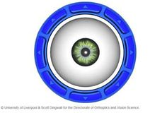Home page for the University of Liverpool Orthoptics programme and link to eye movement animation.