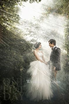 pre-wedding photography concept