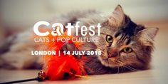 London is getting its first cat festival!