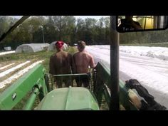 2015 Piglets Out to Pasture with Farmer Pete - YouTube