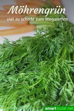 Möhrengrün nicht wegwerfen: 3 köstliche Rezepte mit den gesunden Blättern Carrot green is at least as healthy as the orange turnip. With these recipes you can conjure up tasty dishes instead of throwing them away! Smoothie Menu, Smoothie Recipes, Soup Recipes, Vegetarian Recipes, Healthy Recipes, Delicious Recipes, Healthy Pesto, Vegetable Soup Healthy, Carrot Greens