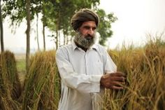 Lunch in the sunshine – the relationship between #agriculture and #climatechange.