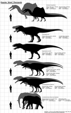 Popular 'Giant' Theropods except with L.africana by RizkiusMaulanae most accurate and up to date chart most up to date chart Prehistoric Wildlife, Prehistoric Dinosaurs, Jurassic World Dinosaurs, Jurassic Park World, Prehistoric Creatures, Dinosaur Drawing, Dinosaur Art, Legends And Myths, Spinosaurus