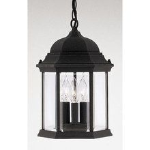 "View the Designers Fountain 2984-BK 3 Light 9.5"" Cast Aluminum Hanging Lantern from the Devonshire Collection at LightingDirect.com."