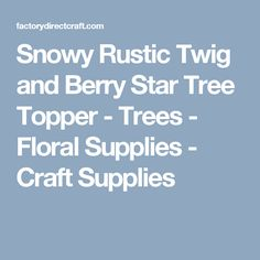 Snowy Rustic Twig and Berry Star Tree Topper - Trees - Floral Supplies - Craft Supplies