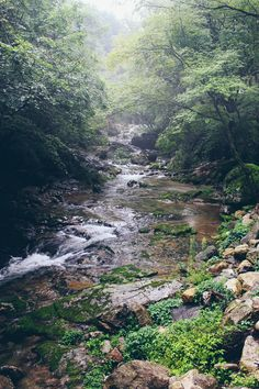 Chiaksan National Park.  Summer hiking in Korea is the best!