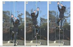 A climbing system inspired by geckos has turned Spider-Man fiction into fact by making it possible for a human to scale vertical glass. During tests, an 11-stone (70kg) volunteer crawled up a 12ft (3.6 metre) pane using just sticky attachments on his hands and feet (pictured)