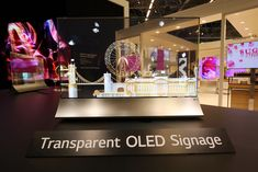 """A portfolio of OLED """"optimal vertical solutions"""" including Transparent, Open Frame OLED and Video Walls will appear alongside an OLED Canyon Attractor. Partition Screen, Window Screens, Screen Door Latch, Lg Display, Transparent Screen, Metal Screen, Display Technologies, Video Wall, Screen Design"""