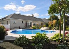 Adding Low-Maintenance, Colourful Gardens Around Pool | A Touch of Dutch Low Maintenance Landscaping, Low Maintenance Garden, Coral Bells Heuchera, Colorful Garden, Ornamental Grasses, Pool Landscaping, Natural Stones, Perennials, Dutch