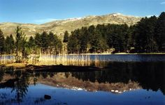 Lac-de-creno-corse © commons.wikimedia.org