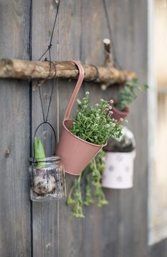 DIY - Hang your plants on the wall- DIY – Hängen Sie Ihre Pflanzen an die Wand diy garden plant hanger - Hanging Plants, Indoor Plants, Diy Hanging, Potted Plants, Diy Jardim, Diy Wand, Plant Wall, Cool Plants, Garden Planning