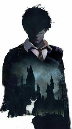 Harry Potter Anime, Magia Harry Potter, Harry Potter Quiz, Mundo Harry Potter, Theme Harry Potter, Harry Potter Tumblr, Harry Potter Pictures, Wallpaper Harry Potter, Harry Potter Artwork